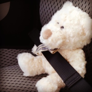 Buckle up new little best friend.